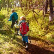 Scouting luchtbed of matje kopen? De beste scouts matjes vergeleken